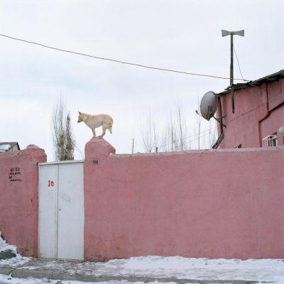 Serkan Taycan, Habitat #19, 2009, Archival pigment print, 80x80 cm.