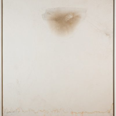 Suat Akdemir, Organic formation series, 1999-2005, Organic formation and pigment on canvas, 147 x 132 cm.