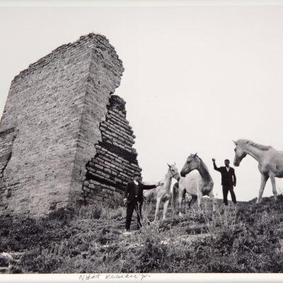 Ara Güler, City walls and horses, 1969, 44x63 cm.